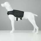 XDOG WEIGHT  FITNESS VEST FOR DOGS : HELP IMPROVE OVERALL HEALTH