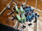 24 BASS FLIES SELECTION FRONTIER FLY FISHING FLIES LOT POPPERS