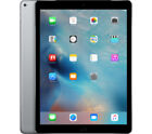 iPad Pro 2nd Generation 12.9 Inch Tablet Gray WiFi + Cellular 4G Unlocked