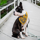 Dog Bandanna Pet Bandana St Louis Blues Hockey Dad Gift Customizable $12.89 USD on eBay