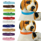 Soft PU Leather For Dogs Solid Neck Strap Cats 1PC Pet Collars Colorful