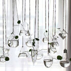 Clear Flower Hanging Vase Planter Terrarium Container Glass Home Wedding Decor L