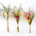 Natural Dried Flower Gypsophila Bouquet Diy Wedding Party Floral Art~home Decor