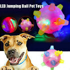NEW Jumping Activation Ball for Dogs Flashing Ball Light Sounds Jump