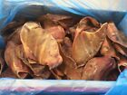 EXTRA LARGE PIGS EARS-5/10/25/50/100-GUARANTEED QUALITY DOG TREAT YOU CHOOSE