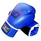 BLUE A/L BOXING KICK SPARRING TRAINING GLOVES