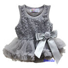 Newborn Baby Girls Rosettes Silver Gray Bodysuit Romper Pettiskirt Party Dress