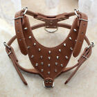 Spikes Studs Brown Leather Dog Harness Terrier Pitbull Mastiff Chest size 26-34""