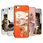HEAD CASE DESIGNS CATS CASE COVER FOR APPLE iPHONE 5C