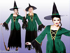 CAULDRON WITCH FANCY DRESS HALLOWEEN BOOK WEEK LADIES WOMENS OUTFIT HAT COSTUME
