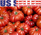 30 ORGANICALLY GROWN Costoluto Genovese Pomodoro Tomato Seeds Heirloom NON GMO