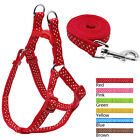 Step-in Nylon Pet Dog Harness Leash Set for Small Large Breeds Yorkie Labrador