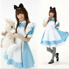 Alice In Wonderland Maid  Sexy Maid Outfit Cosplay Fancy Dress Halloween Costume