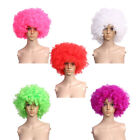 Curly Afro Clown Wig Funky 70s Disco FANCY DRESS Halloween Party Costume Unisex