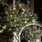 White / Warm White LED Outdoor Battery Operated Fairy String Lights Clear Cable