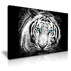 NEW ANIMAL Tiger 27 Canvas Framed Printed Wall Art ~ More Size