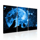 NEW ANIMAL Wolf 2 Canvas 3A Framed Printed Wall Art ~ More Size