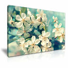 FLOWER Cherry 1 1-L Canvas Framed Printed Wall Art ~ More Size