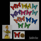 Transparent Film Butterfly #19 MIXED Size 3 PRE-CUT 8, 16 or 32 suncatcher 3D