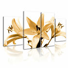 Lily Bloom Lilies Modern Wall Art Canvas Print Framed Box ~ 4pc Many Size