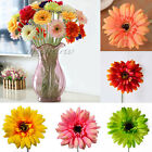 Artificial Single Cineraria Chrysanthemum Home Wedding Party Decor Fake Flower