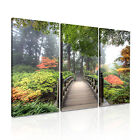 Landscape Forest 34 Canvas 3A Framed Printed Wall Art ~3 Panels