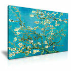 Almond Branches in Bloom Vincent van Gogh Wall Art Canvas Print Framed Box