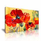 Red Poppy Flower Poppies Modern Wall Art Canvas Framed~ More Sizes from 13.99