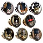 Zinc Alloy Knobs Steampunk Cats 30mm Cupboard Drawer Door Handles Decorated