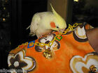 """Bird Toys Assorted Parts Parrot """"Shawl"""" Keep Them Busy"""