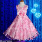 Rose Floral Pattern Flower Girl Dress Wedding Bridesmaid Party Size 2y-7y #242