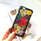 Luxury Cute new Real Flowers fresh hard back case cover for iphone 7 6 6S plus 5