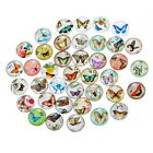 10PCs Mixed Glass Embellishments Flatbacks Cabochon For Phone Card Carft DIY