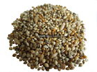 Weight Loss Bird Seed Mix 1kg to 10kg feed food aviary cage wild budgie finch