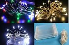 10ft 3M Warm. White,multi-color, Battery Powered Wire 30 Led String Fairy Light