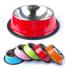 Dog Bowl Puppy Cat Food Drink Water Dish Feeders Stainless Steel Pink Red Green
