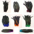 Hot!!!50-100pcs rooster tail feathers dyed 14-16 inches/35-40cm