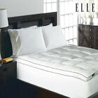 ELLE Home 1200 Thead Count Cotton-Rich Solid Mattress Pad