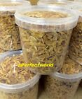 1 Litre TUB/BUCKET~DRIED SHRIMP COCKTAILS TURTLE/TERRAPIN FOOD TREAT KOI,CICHLID