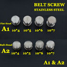 【A1A2】25pc Stainless Steel Belt Screw Saddle Tack Chicago Screw Leathercraft