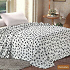 MicroPlush Printed Blanket Dalmatian