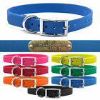 """Hunting Dog Name TUFF Collar Strap Heavy Duty D Ring 3/4"""" Wide & Brass ID Plate"""