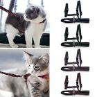 Nylon Cat Kitten Collar Adjustable Harness Pet Walking Out Lead Safety Rope New