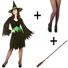 Adult Ladies Wicked Spooky Horror Witch Halloween Fancy Dress Costume + Broom