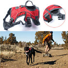 Outdoor Large Dog Harness Padded Secure Climbing Running Webmaster Dog Harness