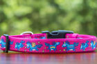 Unicorn Dog Collar, Dog Collars Australia, Padded Collar, Pink Dog Collar.