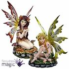 *Nemesis Now Gothic Fairy Pixie Decoration Home Gift Ornament Statue Figurine*
