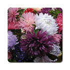 Carnations - Oversized Rubber Coasters Set of 4 or 6