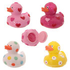 New Duck Lip Gloss - Duck shaped Lip gloss choose from 4 flavours -Poultry Gifts