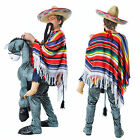 Adults Hey Amigo Fancy Dress Mexican Rider Donkey Bandit Western Step In Costume
